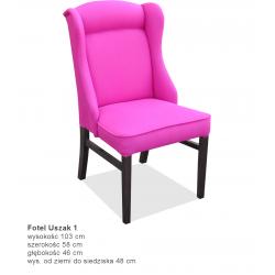 Fotel USZAK (1)