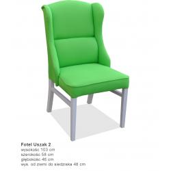 Fotel USZAK (2)